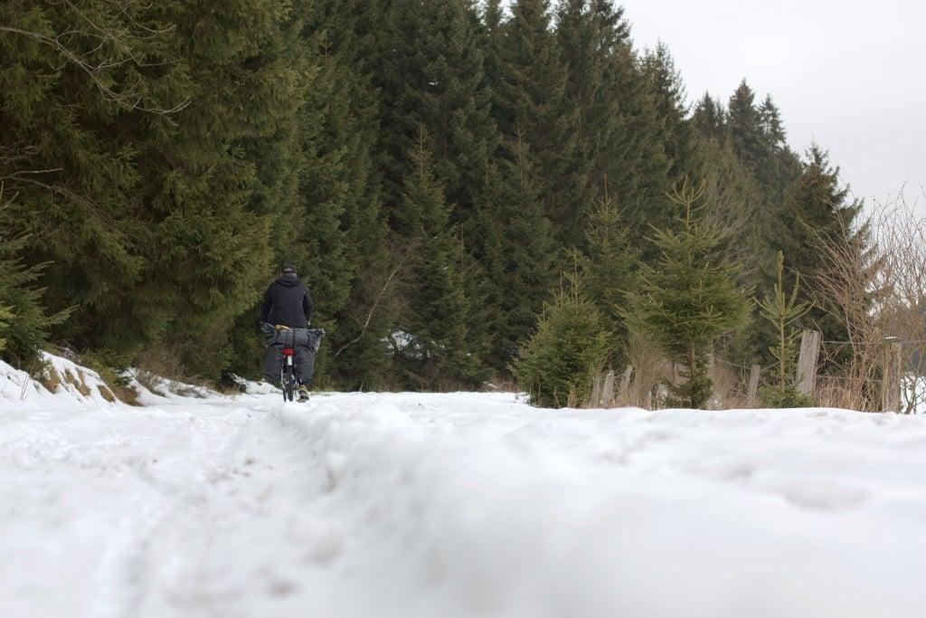 Im unteren Drittel Schnee, darauf in der Ferne ein Radfahrer, oben Tannenwald